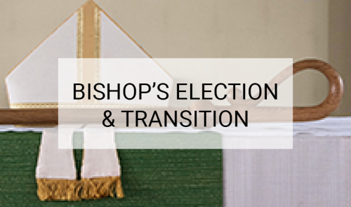 The Bishop's election and transition